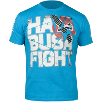 Hayabusa Fight - Aqua